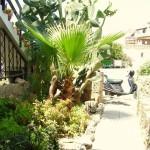 Кипр таунхаус в Тафи Василион