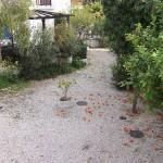 апартамент в Латчи Кипр