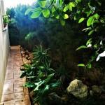 dom-v-sotire-ayia-kipr-garden-5